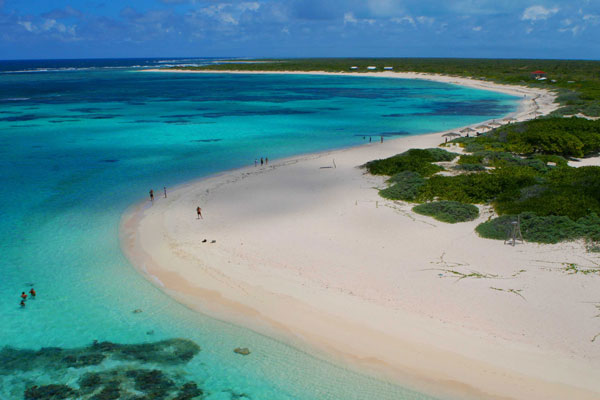 anegada-loblolly-bay